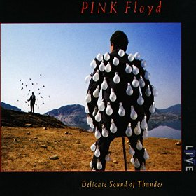 pink floyd delicate sound