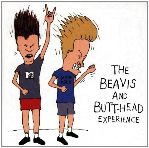 beavis butthead experience