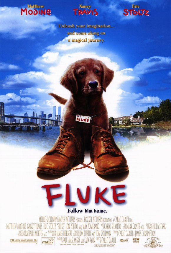 fluke-movie-poster-1995-1020249006